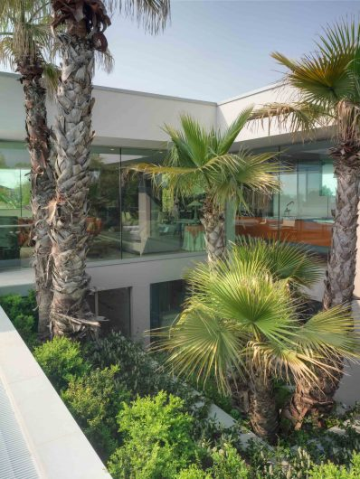 Vue de l'atrium vert avec mur de verre pleine hauteur